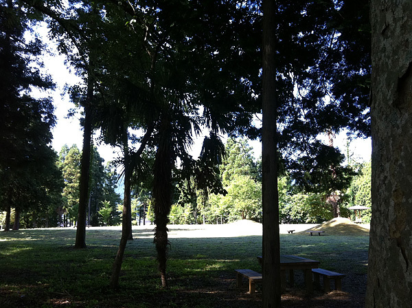 但馬のワンポイント-植村直己記念スポーツ公園